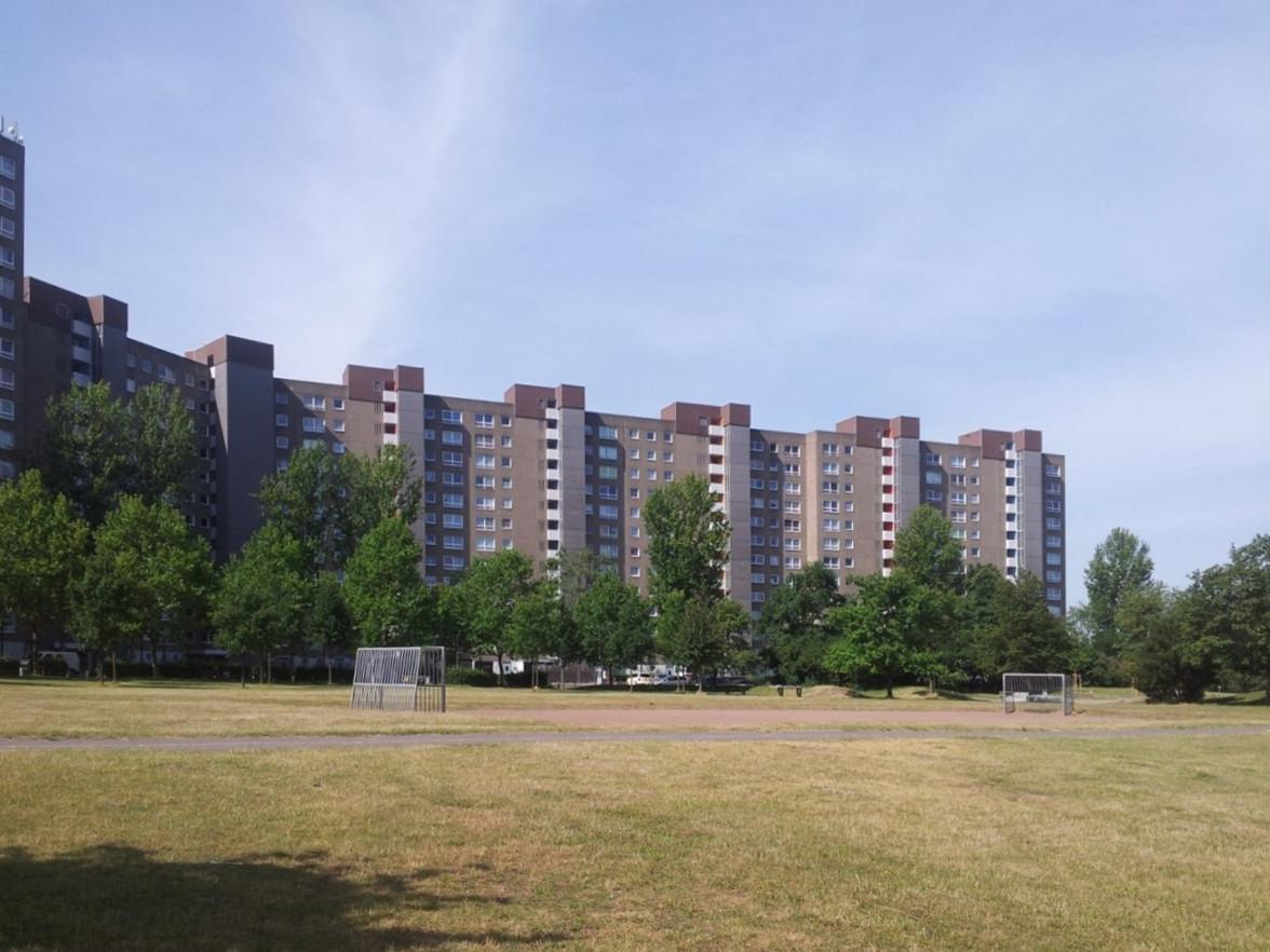 Umstritten: Die Hochhäuser in Darmstadt Kranichstein (Foto: Julius Reinsberg)