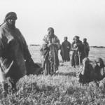 Beduinen bei Samach (Bild: V. Schwöbel, um 1905, Coypright: G.-Dalman-Institut Greifswald)