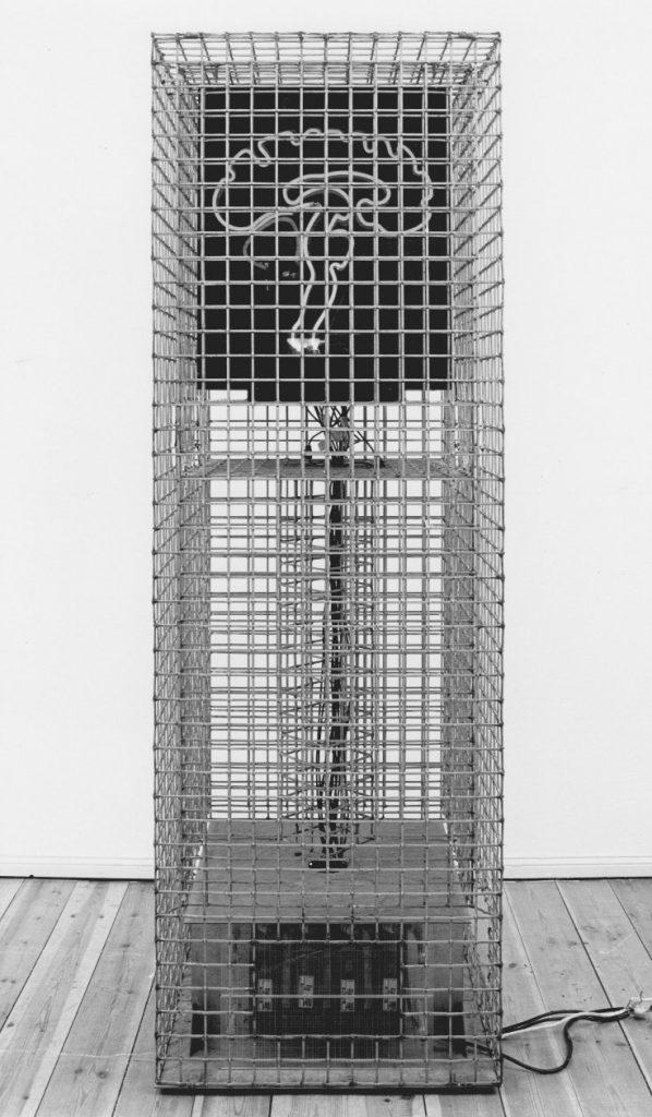 Frank Oehring, Gehirn im Käfig