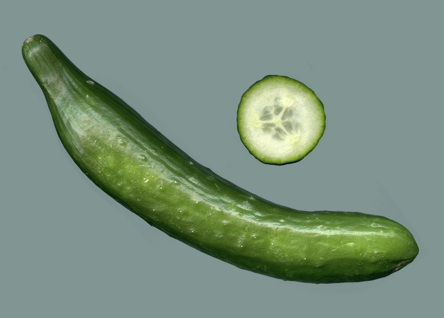 Salatgurke (Bild: Rainer Zentz, GFDL oder CC BY SA 3.0)
