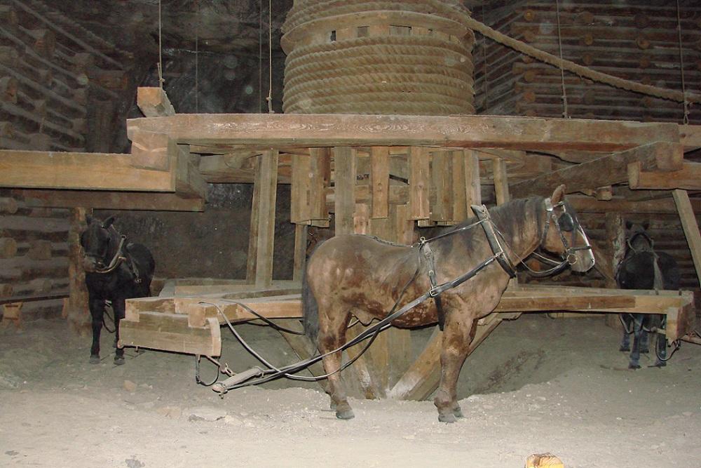 Wieliczka, rekonstruierte Pferdegöpel (Bild: Rj1979)