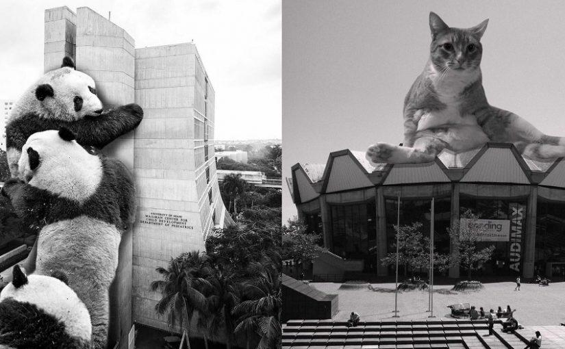 Animals of Brutalism
