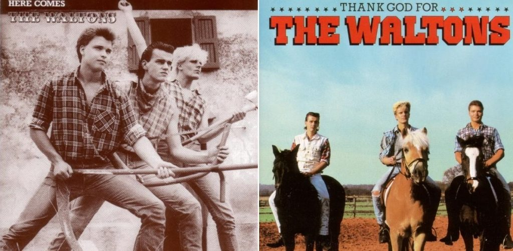 The Waltons (Bilder: Plattencover der 1980er Jahre)
