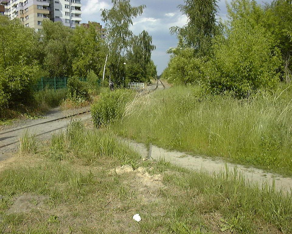 Trampelpfad (Bild: Ska13351, PD, 2006)